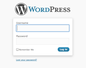 The wp-login.php Login Form